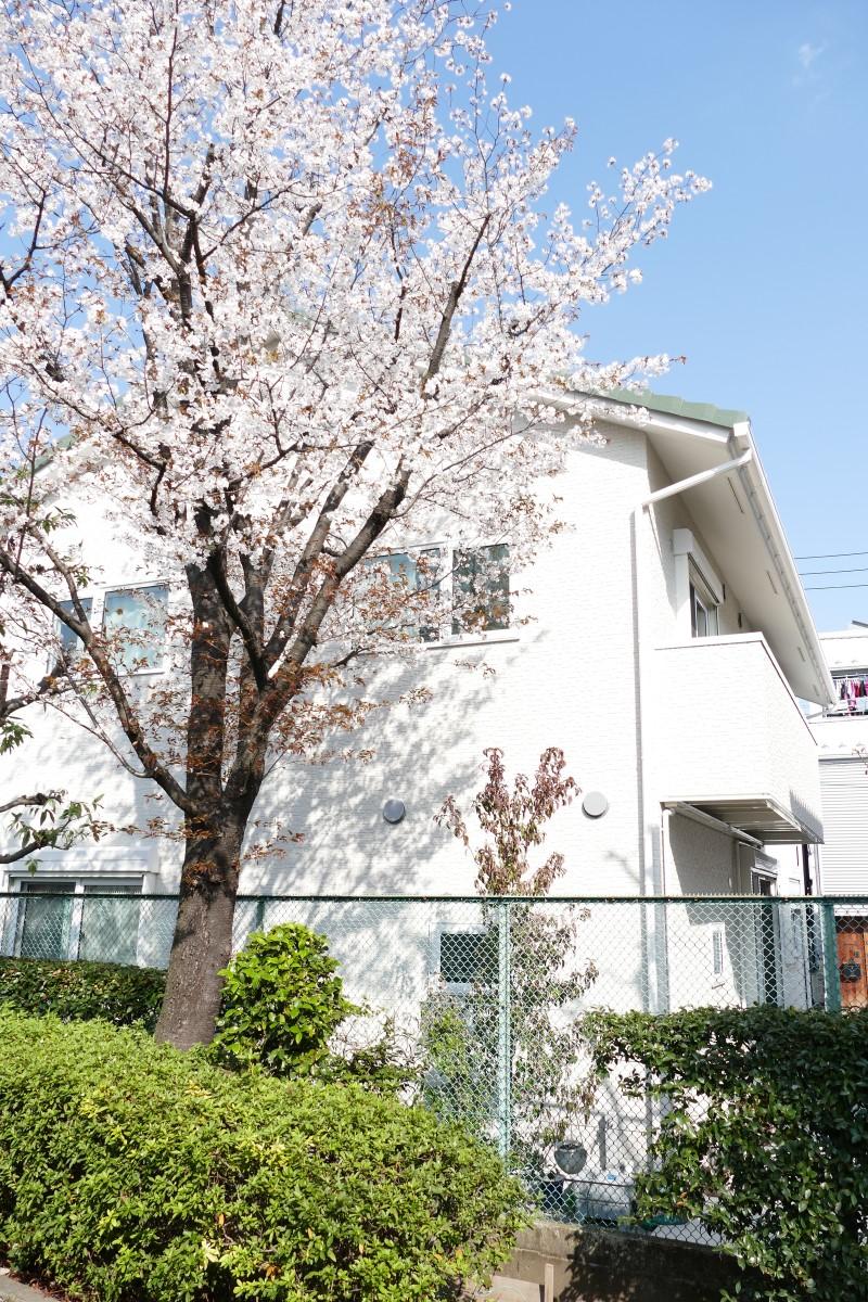 東京都荒川区 暖かさと静かさに包まれる住まい